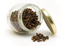 Cloves in a jar Royalty Free Stock Image