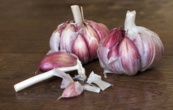 Cloves of organic garlic on a wooden table. Cooking ingredient Stock Images