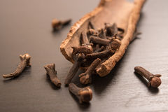 Cloves randomly arranged in Cinnamon Royalty Free Stock Images