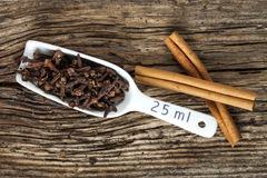 Cloves in the scoop, two cinnamon barks Royalty Free Stock Photos
