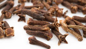 Cloves Spice Royalty Free Stock Photos