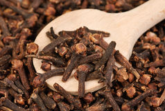 Cloves  (spice) and  wooden  spoon close-up Royalty Free Stock Images