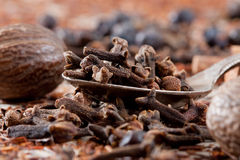 Cloves in spoon Royalty Free Stock Image