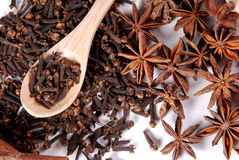 Cloves in the spoon and anice stars Royalty Free Stock Photos