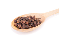 Cloves in the spoon Stock Image