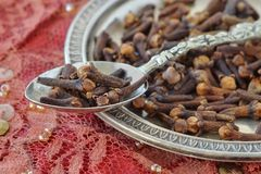 Cloves on spoon and metal plate. Macro Royalty Free Stock Photo