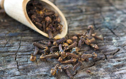Cloves Royalty Free Stock Images