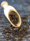 Cloves Royalty Free Stock Photo