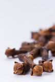 Cloves on white background. Several cloves one after the other vertical format Stock Photo