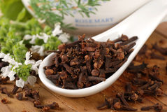 Cloves in white spoon Royalty Free Stock Photos