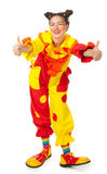 Clown bildet Spaß Stockbilder