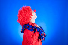 Clown on blue backgound Royalty Free Stock Image