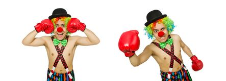 The clown with boxing gloves isolated on the white. Clown with boxing gloves isolated on the white stock image