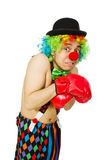 Clown with boxing gloves Stock Photography