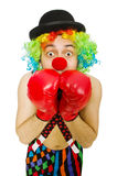 Clown with boxing gloves Royalty Free Stock Images