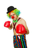 Clown with boxing gloves Royalty Free Stock Photos