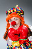 Clown with boxing gloves isolated on white Stock Image