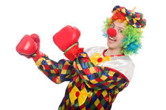 Clown with boxing gloves isolated on white Royalty Free Stock Images