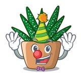 Clown cartoon zebra cactus plant at park. Vector illustration stock illustration