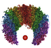 Clown colorful wig hair funny attire. Stock Images