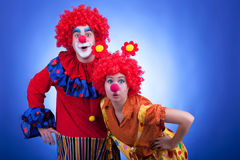 Clown couple on blue background Stock Image