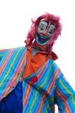 clown crazy Στοκ εικόνες με δικαίωμα ελεύθερης χρήσης