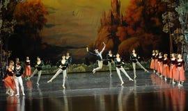 The clown dazzling dance-ballet Swan Lake Royalty Free Stock Image