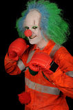 Clown de boxeur Photographie stock