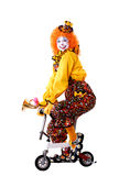 Clown de cirque Images stock