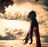 Clown doll hanged on haloween day royalty free stock photo