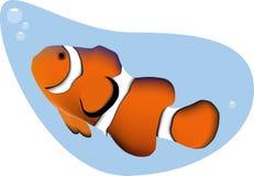 Clown-Fische Lizenzfreies Stockfoto