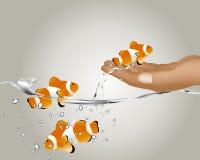 Clown Fish stock illustration