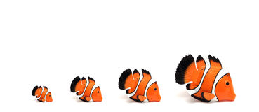 Clown fish. Family of toy clown fishes Stock Photos