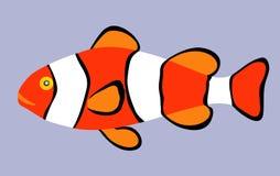 Clown Fish. Stock Photos