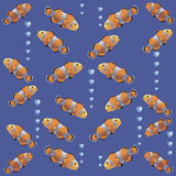Clown fish on a blue background. Pattern. Colorful fish coral reef aquariums. Design for textiles, wrapping paper, napkins, background for the site Stock Image