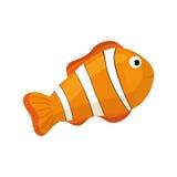 Clown fish cartoon. Icon  illustration graphic design Stock Image