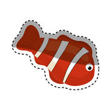 Clown fish cartoon. Icon  illustration graphic design Royalty Free Stock Images