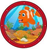 Clown fish cartoon. Illustration of clown fish cartoon Stock Image