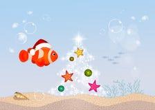Clown fish at Christmas. Illustration of clown fish at Christmas Royalty Free Stock Photo