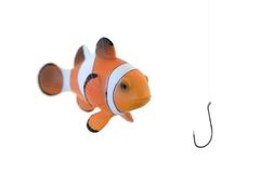 Clown Fish Stock Photo