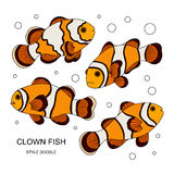 Clown fish. Elements of a clown fish made in the style of doodle. Vector illustration Stock Image