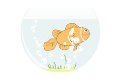 Clown Fish in Fish tank. Illustration of a clown fish in a fish bowl with bubbles and some green and sand Royalty Free Stock Image