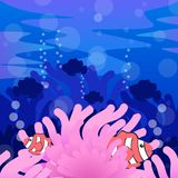 Clown fish illustration stock photos
