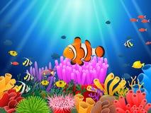 Clown fish under the sea. Illustration Royalty Free Stock Photo