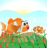 Clown fish under water Illustration. Vector illustration of a clown fish underwater Royalty Free Stock Photo