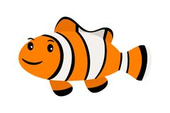 Clown fish. Underwater swimming funny smiling clownfish or anemonefish isolated on white. Background Stock Image