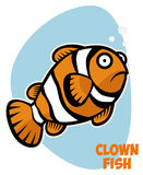 Clown fish. Vector character of a clown fish Royalty Free Stock Image