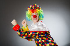 The clown in the funny concept Stock Photography