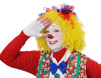 Clown Gesturing Royalty Free Stock Image