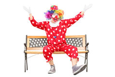 Clown gesturing happiness seated on bench. Isolated on white background Stock Photography